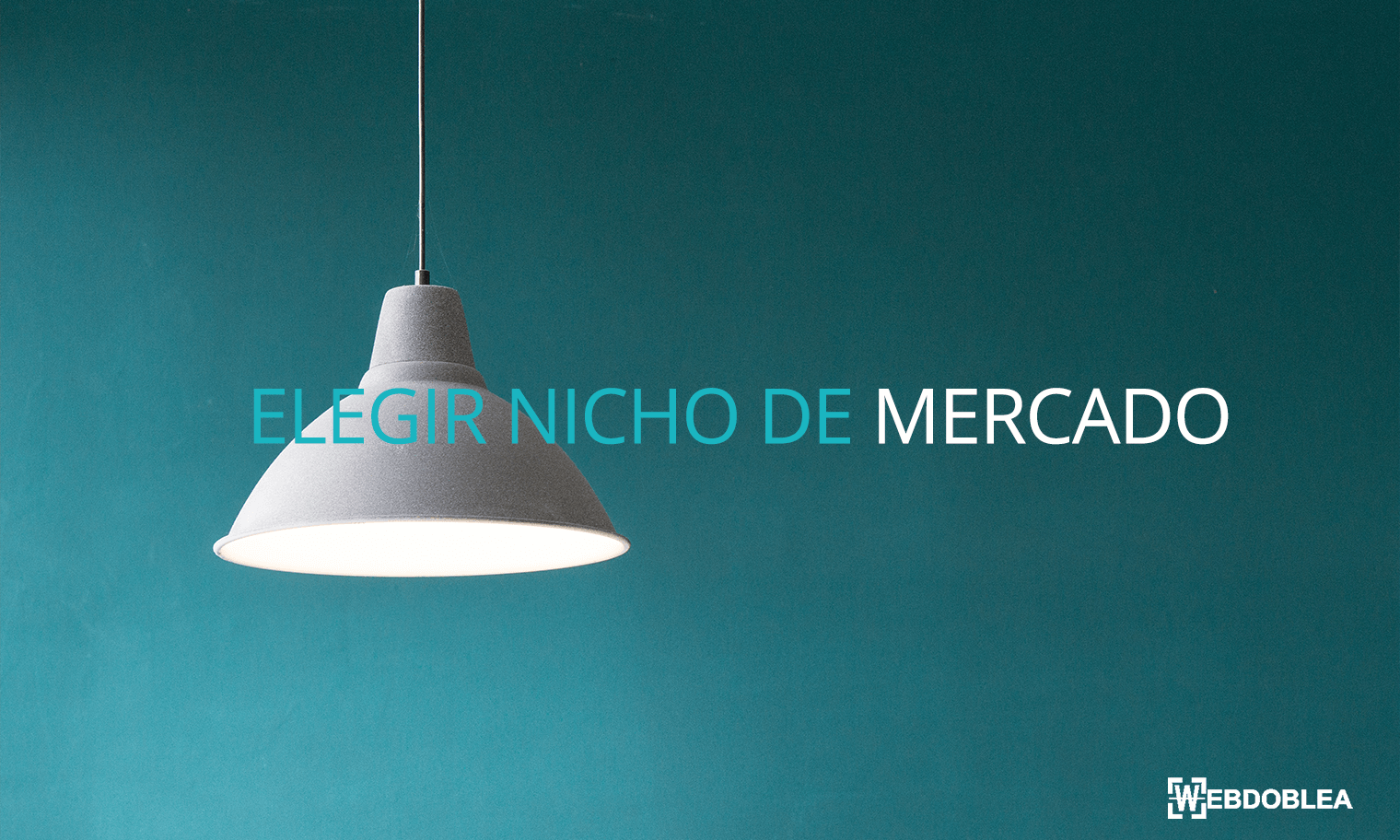 elegir_nicho_mercado